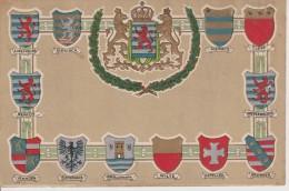 LUXEMBOURG-CARTE GAUFREE AVEC LES BLASONS DES LOCALITES LUX. - Postcards