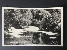 Dedemsvaart,Gemeente-Park----JosPe,Arnhem----gelopen 1952