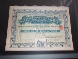 COMPAGNIE COLONIALE FRANCAISE D'ELEVAGE ET D'ALIMENTATION DE MADAGASCAR (1897) - Non Classés