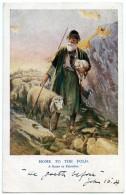 PALESTINE : HOME TO THE FOLD / POSTMARK - SUTTON (ENGLAND) - Palestine