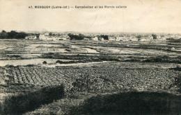 MESQUER(LOIRE ATLANTIQUE) SEL - Mesquer Quimiac