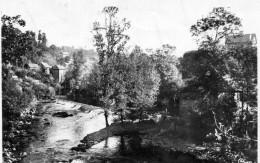 VIGEOIS  Bords De La Vezere    1954 - Autres Communes