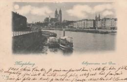 MAGDEBURG  Elbpanorama Mit Dom - Magdeburg