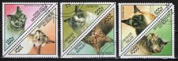 TOGO - 1999 - SERIE GATTI - CATS - USATI - Togo (1960-...)