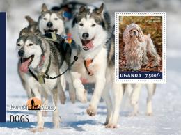 UGANDA 2014 - Sled Dogs - YT BF428; CV = 8 € - Other Means Of Transport