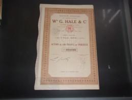 W G. HALE (1929) SAIGON , INDOCHINE - Shareholdings