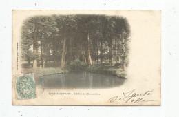Cp , 78 , PONTCHARTRAIN  , L´allée Des CHENNEVIERES , Voyagée 1903 , Dos Simple - France