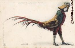 10 CPA THEATRE CHANTECLER EDMOND ROSTAND GUITRY DEREVAL COQUELIN COSTUME COQ GALIPAUX MERLE POULE DINDON PINTADE HIBOUX - Théâtre