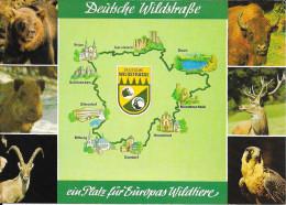 Duitsland/Deutschland, Daun Und Umgebung, Eifel, Deutsche Wildstrasse, 7-bilder, Ca. 1980 - Daun