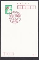 Japan Commemorative Postmark, Animal Dragonfly Ginkgo (jc9013) - Japan
