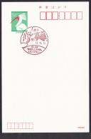 Japan Commemorative Postmark, Fruit Dragonfly Ginkgo (jc9016) - Japan