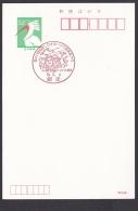 Japan Commemorative Postmark, Abashiri Okhotsk Ice Festival Swan Bird (jc9034) - Japan