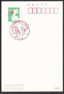 Japan Commemorative Postmark, National Athletic Meet Ski (jc9040) - Japan