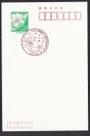 Japan Commemorative Postmark, Space Alien (jc9741) - Japon