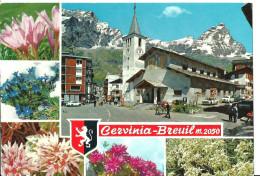 Cervinia Breuil (Aosta) Vedute: Chiesa E Flora Alpina, Church, Eglise - Other Cities