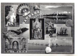 Barbana Grado, Saluti Da - F.G. - Anni ´1950 - Gorizia