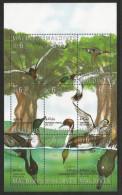 1995, Malediven, 2298/06, Entenvögel. Kleinbogen.  MNH ** - Moldawien (Moldau)