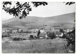Cpsm: 88 COLROY LA GRANDE (ar. Saint Dié) Vue Panoramique  CIM  N° 4 - Colroy La Grande