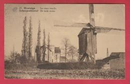 Scherpenheuvel - De Oude Molen  ( Verso Zien ) - Scherpenheuvel-Zichem