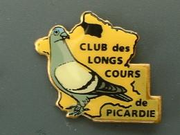 PIN´S COLOMBOPHILIE - PIGEON - CLUB DES LONGS COURS DE PICARDIE - Dieren