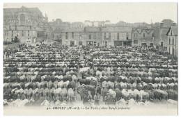 CHOLET (49) Le Foirail - Le Marché Aux Boeufs (1600 Boeufs Présents) - Très Beau Plan - Belle Animation - Cholet