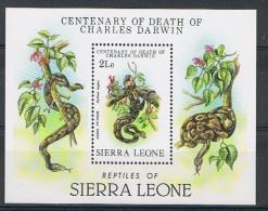 Sierra Leone Y/T Blok 12 (**) - Sierra Leone (1961-...)
