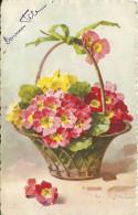Panier De Fleur C Klein - Klein, Catharina