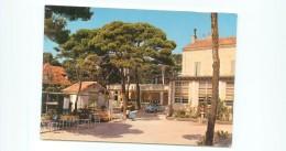 Cpsm -  Sauset Les Pins -  Le Centre De Loisirs  Du Personnel De La Société Ricard                    T193 - Francia