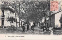 AIN-TAYE --Rue Des Platanes - Algérie