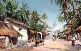 CEYLON - Road Scene Colombo, Karte Um 1910 - Sri Lanka (Ceylon)