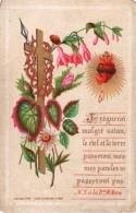 Image Religieuse - Carte De Promesses - N.S à La Bse M. Marie - Je Règnerai Malgrè Satan; Le Ciel Et ... - Coeur Sacré - Devotion Images