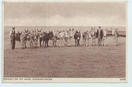Burnham-on-Sea - Donkeys On The Sands - England
