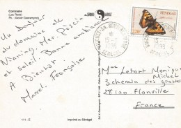 Senegal 1996 Guichet An Soumbedioune Butterfly Small Tortoiseshell (Aglais Urticae) Cover - Senegal (1960-...)