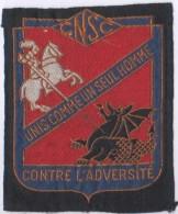Ecusson Tissu.CNSC.Comité National De Solidarité Des Cheminots.SNCF.Chemin De Fer. - Escudos En Tela