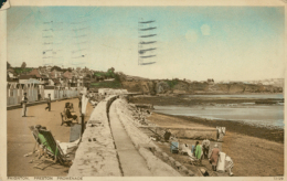 GB PAIGNTON / Preston Promenade / COLORED CARD - Paignton