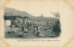 BJ PORTO NOVO / Triage Des Amandes De Palme Par Les Femmes Indigènes / - Benin