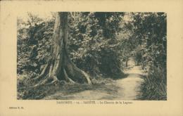 BJ SAKETE / Le Chemin De La Lagune / - Benin