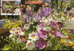 Portugal & Madeira,Flower Festival, Market, Funchal 2015 (2) - Flora