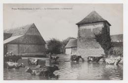 41 LOIR ET CHER - MONDOUBLEAU Environs, La Choupardière, L´abreuvoir (voir Descriptif) - France