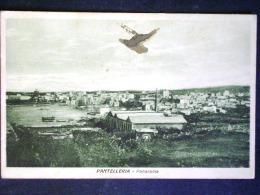 SICILIA -TRAPANI -PANTELLERIA -F.P. LOTTO N°532 - Trapani