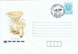 CHAMP-L20 - BULGARIE Entier Postal Enveloppe Illustrée Et Obl. Champignons - Champignons