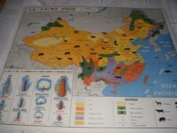 - VENDS Belle CARTE Géographique Bi-Face 91 Cm X 79cm L´URSS Et La CHINE Agriculture Et élevage. - Mapas Geográficas