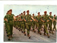 """Cp - """"Zahal"""" Parade Des Parachutistes - Paracaidismo"""