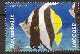 MOZAMBIQUE Marine Life Fishes - Marine Life