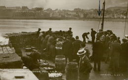 GB PEEL / The Hearing Fisheries / GLOSSY CARD - Engeland