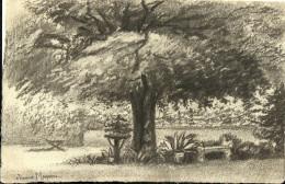 Paysage Jardin Arbre Jeanne Monnier - Autres Illustrateurs