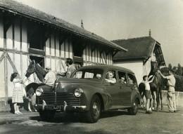France Automobile Voiture Limousine Familiale 203 Peugeot Chevaux Ecuries Ancienne Photo 1956 - Cars