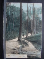 CP. 1569. Linkebeck. Chemin Creux - Linkebeek