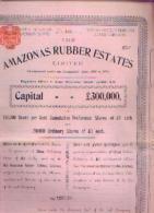 """LONDRES « The Amazonas Rubber Estates Limited"""" - Titre Au Porteur Pour Une Action Ordinaire (1898) - Landbouw"""