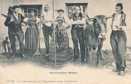 CPA SUISSE Unterwaldner Bauern - LU Lucerne